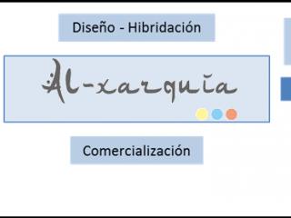 """""""AL-XARQUÍA"""", otro proyecto impulsado en WeetSI-Red"""