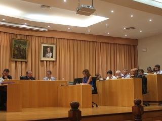 El Pleno apoya las reivindicaciones de la Asociación de Productores de Frutas Tropicales para la modernización de los regadíos