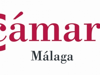 Convocatoria de selección de comercios de la provincia de Málaga para el desarrollo de los Diagnósticos de Innovación Comercial